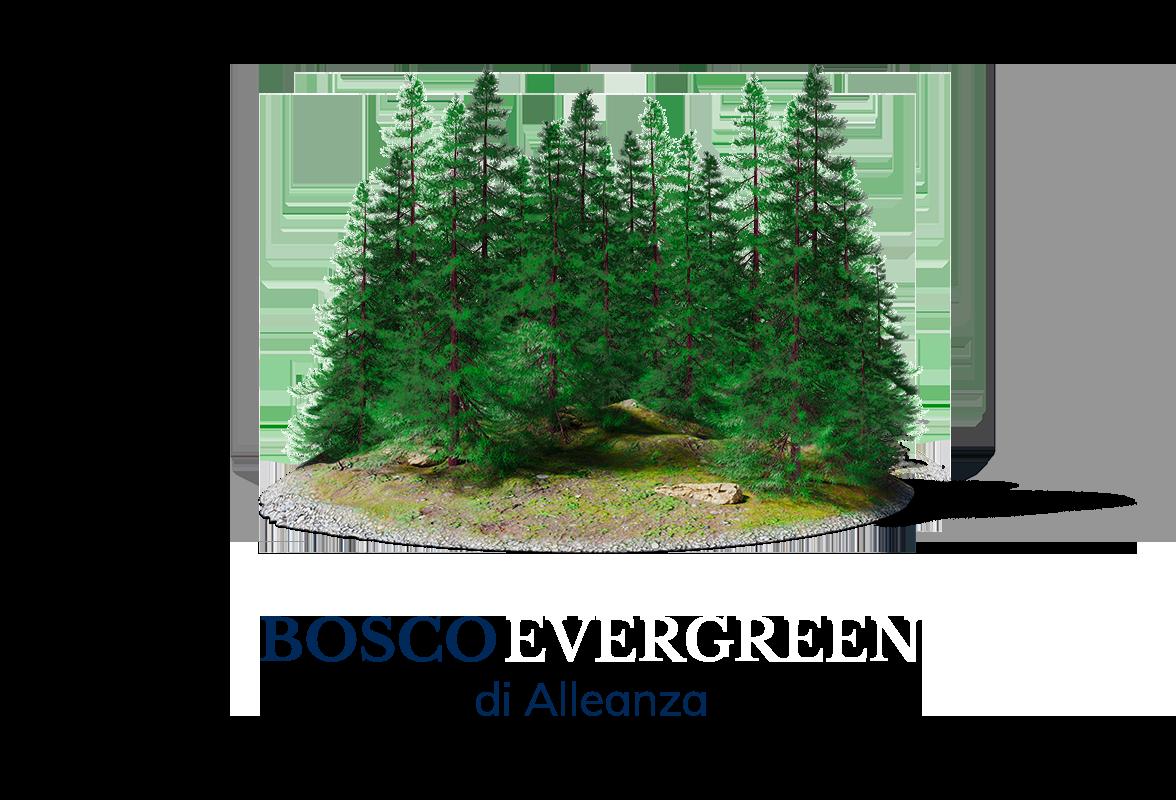 https://cdn.alleanza.it/-/media/alleanza/assets/iniziative/bosco-evergreen/banner-boxed-m-iniziative-bosco-evergreen.png?rev=f24b40654cb5423c80cfb427aa88bbe3